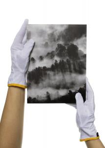 Guidegloves Cotton gloves for pictures