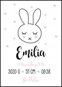 Personlig poster Baby Rabbit - Pink
