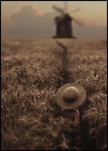 Bildverkstad The Boy In The Field Poster