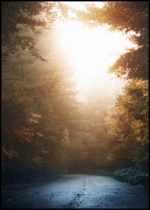 Bildverkstad Autumn Misty Road Poster