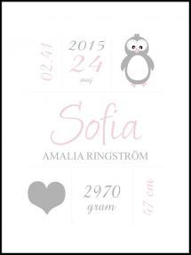 Personlig poster Penguin Birth Poster Pink