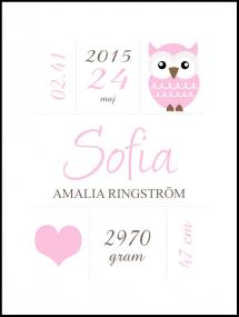 Personlig poster Owl Birth Poster Pink