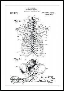 Bildverkstad Patent drawing - Anatomical Skeleton II Poster