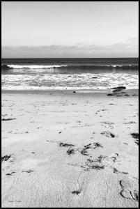 Bildverkstad Malibu Beach sand Poster