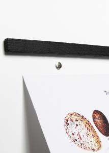 By Wirth Wall Sticks Magnets Black Oak 50 cm