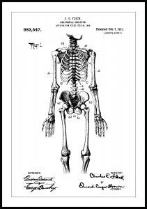 Bildverkstad Patent drawing - Anatomical Skeleton I Poster