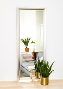 Estancia Mirror Hotagen Silver 60x150 cm